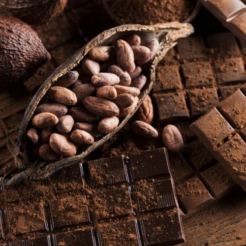 Cioccolato, il cibo degli dei